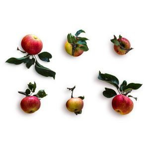 item-cover-red-apples-with-stem-pack