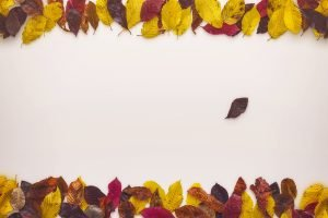 mockup-autumn-scene-10